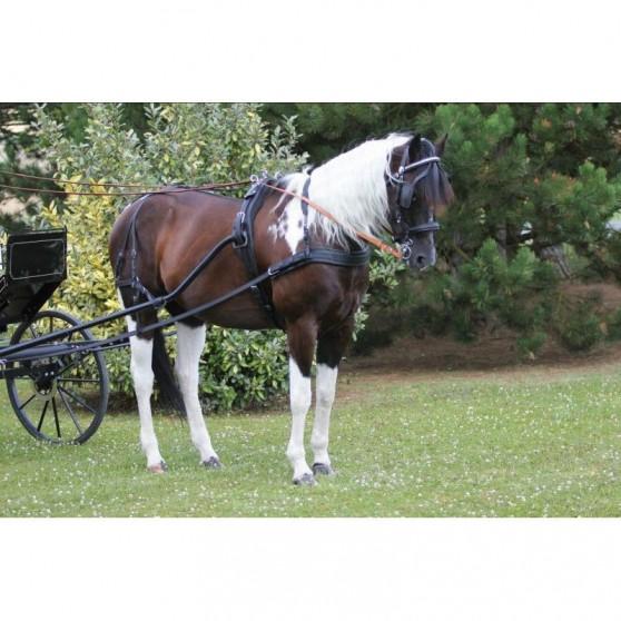 Harnais cuir premier prix cheval bricole complet