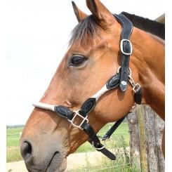 Licol cuir et corde DMH Equitation Majestic