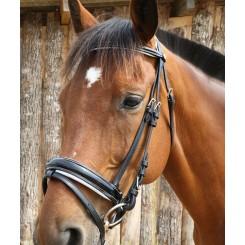 Bridon cuir laqué Koln DMH Equitation Majestic