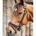 Bridon muserolle bombé renforcé  DMH Equitation Majestic