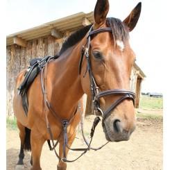 Collier de Chasse Martingale Surpiqué Roma Dhm-Equitation Majestic