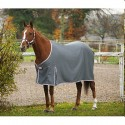 Chemise Equi-Theme Sweat