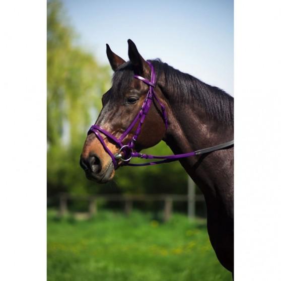 Bridon Norton synthétique couleur taille poney
