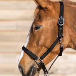 Marque Lamicell Esprit Equitation