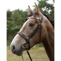 Bridon pour cheval cuir Margareth strass