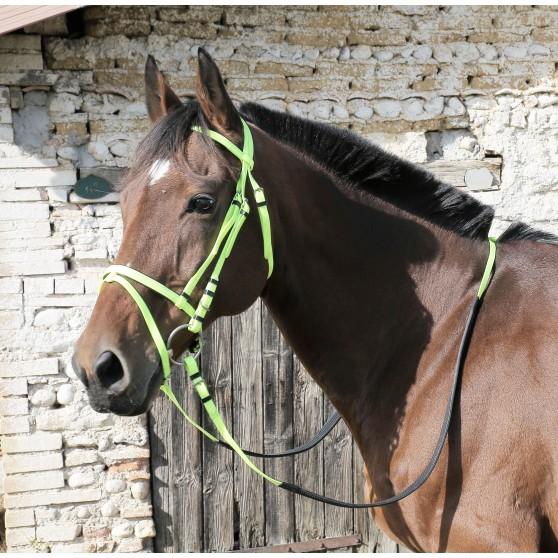 Bridon DMH équitation synthétique couleur