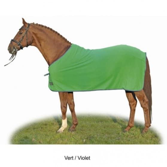 Chemise séchante Alaska de HKM shetland poney cheval Vert / Violet