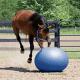 ballon-ethologique-weaver-pour-cheval