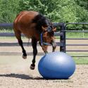 Ballon éthologique Weaver pour cheval