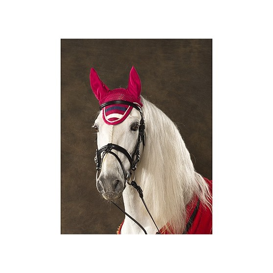 bonnet-equi-theme-stripe-anti-mouches