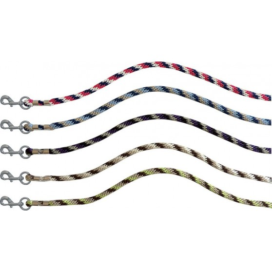 longe-equi-theme-stripe