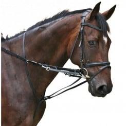 Enrênement Thiedemann ou Howlett DMH Equitation