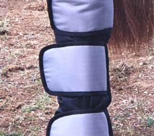 Zoom protections transports DMH Equitation