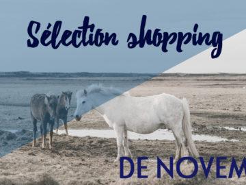 Selection shopping novembre