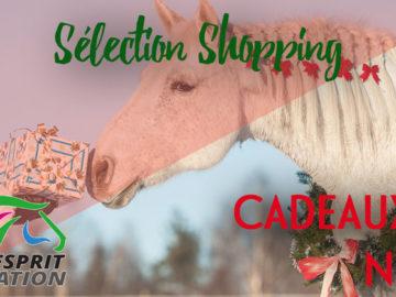 couverture article sélection shopping noël